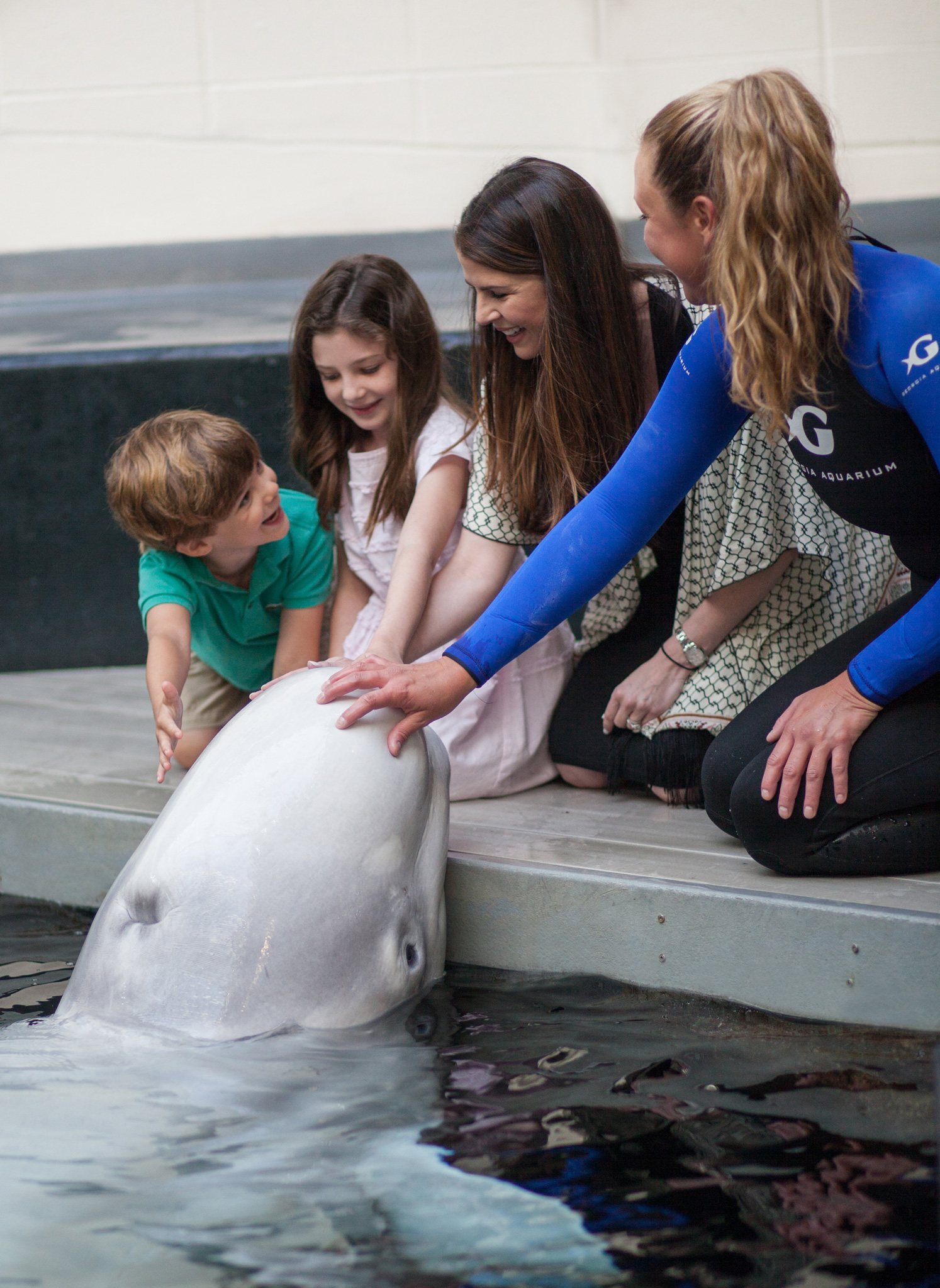 Through interactive programs, guests are able to learn, be inspired, and get close to a beluga whale at Georgia Aquarium.